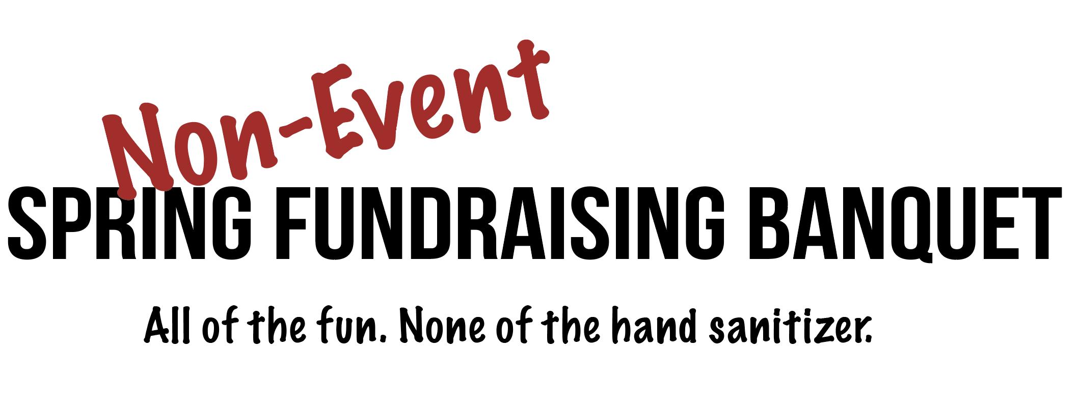 Non-Event Fundraiser